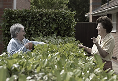 image of neighbours talking over a hedge with tea for article: planning consultant vs architect